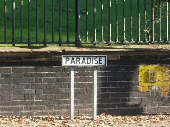 Paradise by Jessica Spengler.jpg
